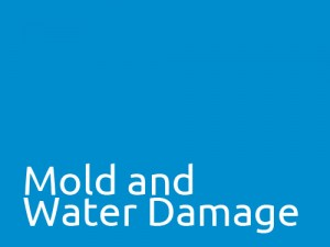 Mold_and_Water_Damage